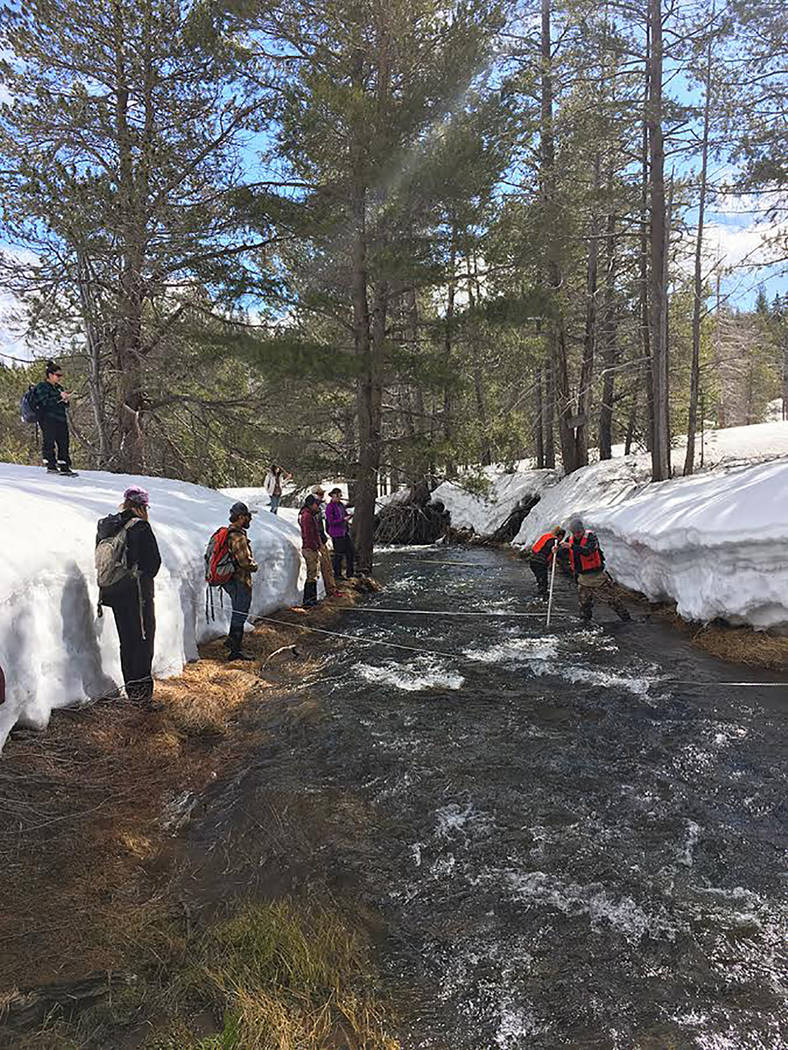 University of Nevada Reno/Special to the Pahrump Valley Times - Assistant Professor Adrian Harpold's Small Watershed Hydrology class from the University of Nevada, Reno measures stream discharge d ...