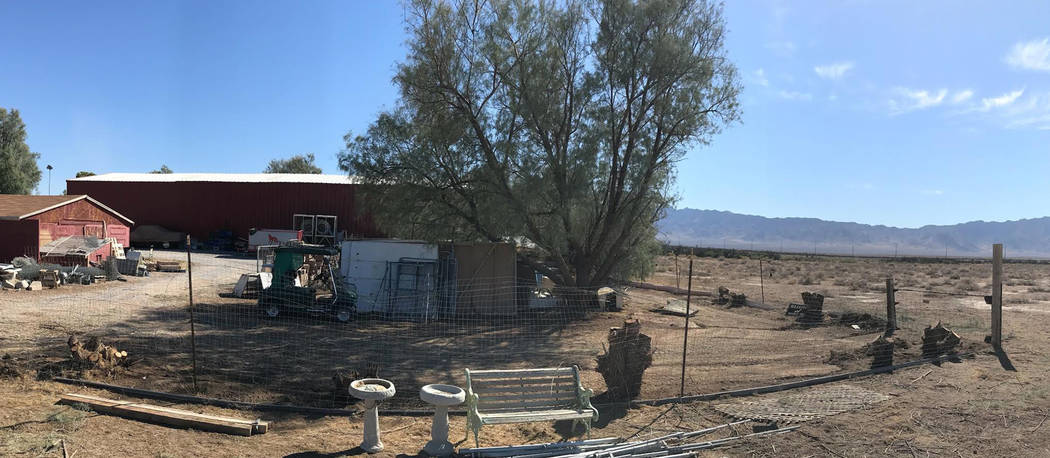 Special to the Pahrump Valley Times The view of the backside of West Star ranch after the removal of several salt cedars.