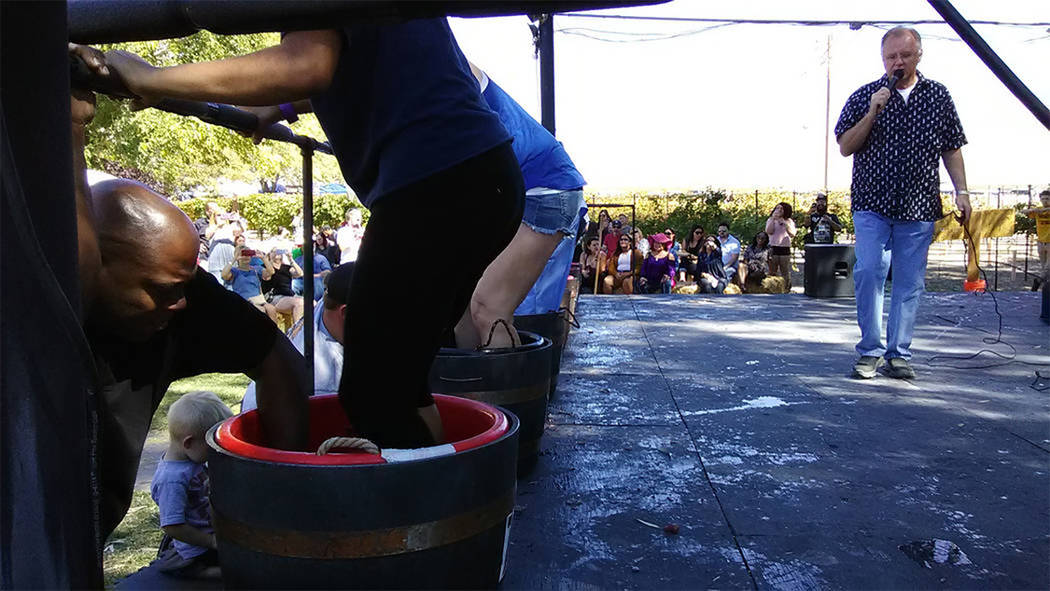 Selwyn Harris/Pahrump Valley Times Pahrump Valley Winery owner Bill Loken provides stomp-by-stomp commentary during a previous Grape Stomp event. The popular, annual event began back in 2003. Wine ...