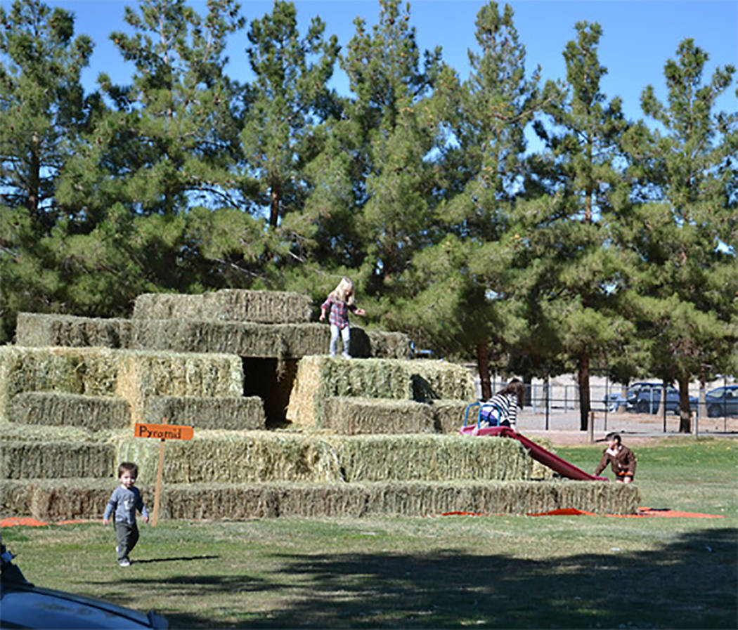 """Selwyn Harris/Pahrump Valley Times Officials with the Pahrump Disability Outreach Program, (PDOP), are inviting the community to its three day """"Pumpkin Days"""" celebration, beginning on Friday O ..."""