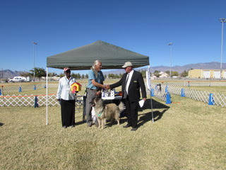 Mary Foley/Special to the Pahrump Valley Times Tynia Dickson (left), new director of dog training and chief steward for the Pahrump Valley Obedience Club, Arthur Bell (center), owner of Levi (fron ...
