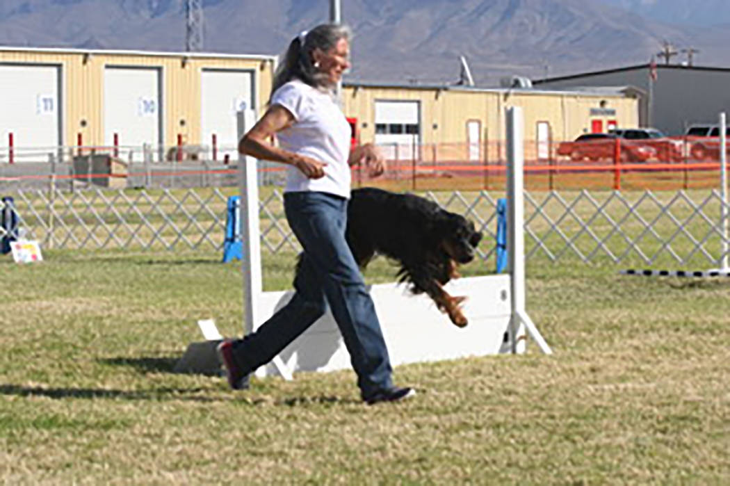 Special to the Pahrump Valley Times Pahrump resident Janet Howson, goes through the paces with her Gordon Setter in the rally exercise portion of the three-day event.