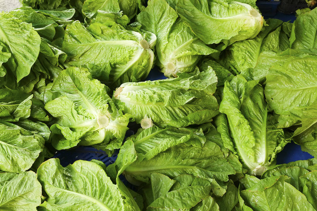 Thinkstock The CDC is advising that U.S. consumers not eat any romaine lettuce, and retailers and restaurants not serve or sell any, until more is learned about the outbreak.