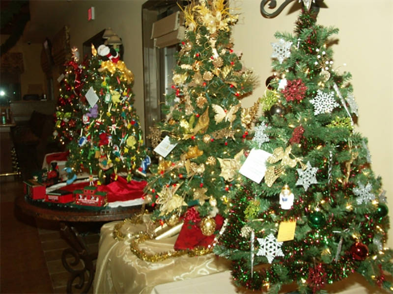 The annual Festival of Trees returns to the Mountain Falls Grill Room on Dec. 7 and there will be plenty of adorned and embellished items for auction-goers to bid on that evening. Special to the ...