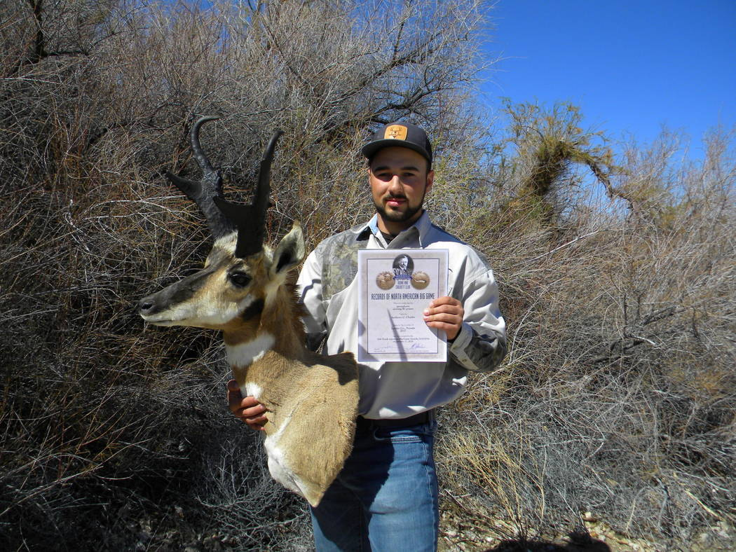 Dan Simmons/Special to the Pahrump Valley Times After six successful hunts, the seventh tag earned Anthony Charles his Boone and Crockett Record Book antelope.