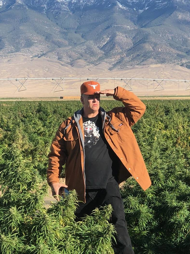 Special to the Pahrump Valley Times Michael Whalen, founder and president of the Nevada Hemp Association, stands in a hemp field in the Tonopah area. The hemp industry could see a boost through th ...