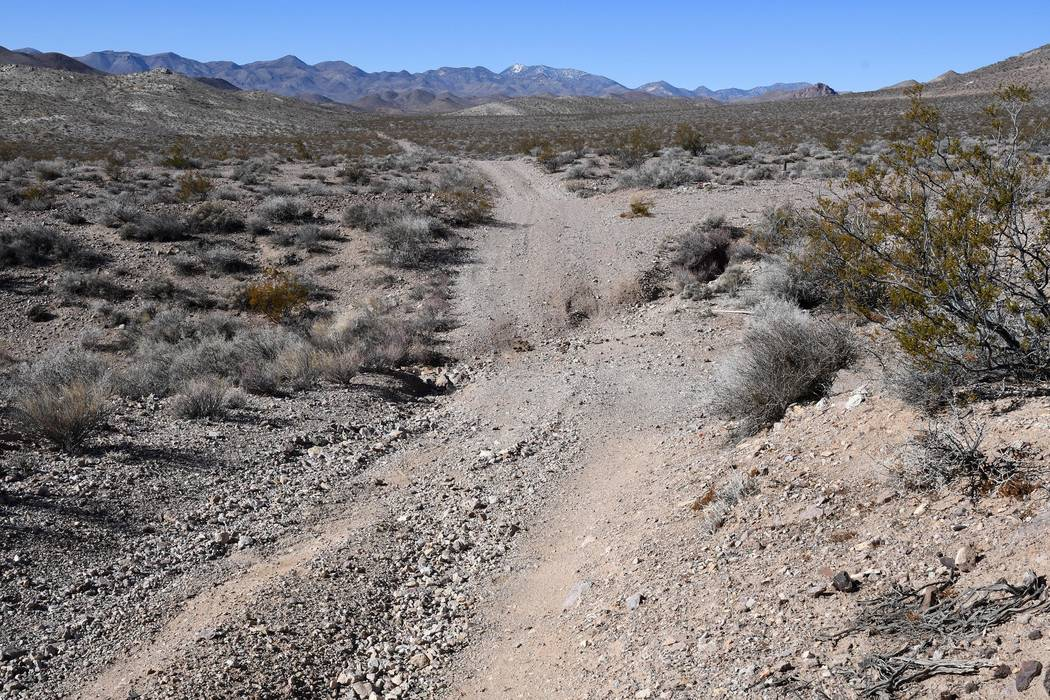 Richard Stephens/Special to the Pahrump Valley Times This is probably the worst choice of the roads that fork off of this road toward the park.