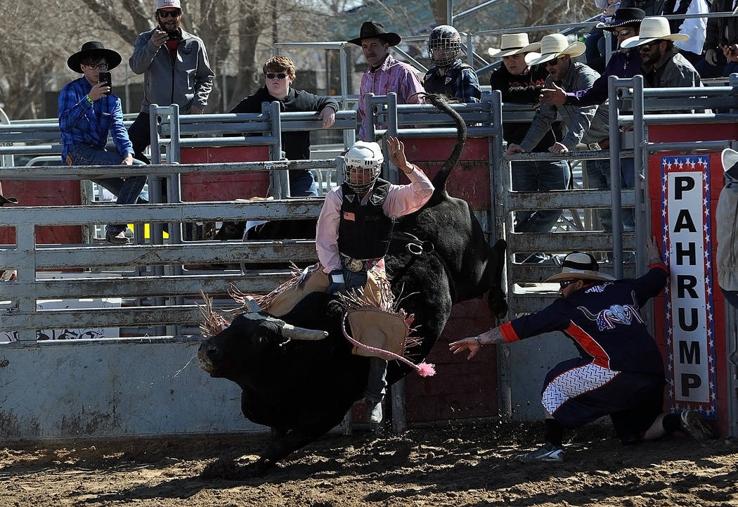 Horace Langford Jr./Pahrump Valley Times Pahrump Valley senior Tye Hardy had a rough time Sunday but a strong run Saturday and remains the only high school bull rider to score any points this year.