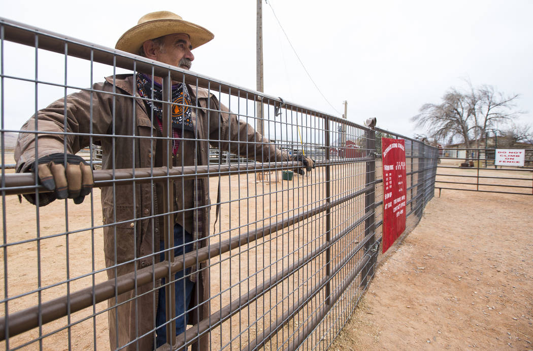 Ranch hand Steve Myers, who works at the Red Rock Riding Stables, looks out at Bonnie Springs Ranch outside of Las Vegas on Saturday, Jan. 12, 2019. (Chase Stevens/Las Vegas Review-Journal) @csste ...