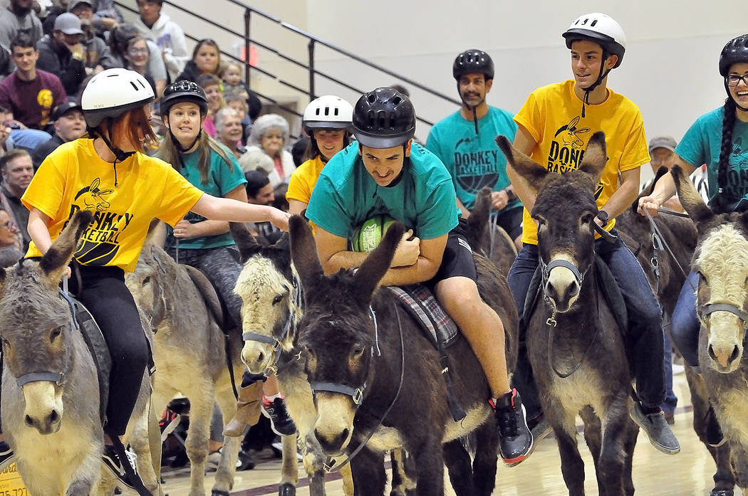 Horace Langford Jr./Pahrump Valley Times Pahrump Valley High School seniors battle faculty and staff of Rosemary Clarke Middle School in the annual Donkey Basketball game Friday night at Pahrump V ...