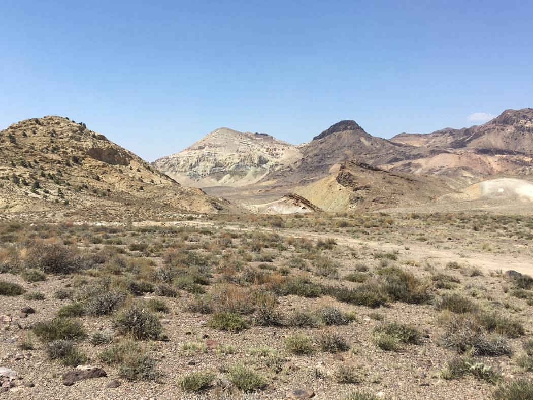 Special to the Pahrump Valley Times Rhyolite Ridge already has over 60 existing drill holes, according to data. The deposit is estimated to contain the equivalent of 4.1 million metric tons of lit ...