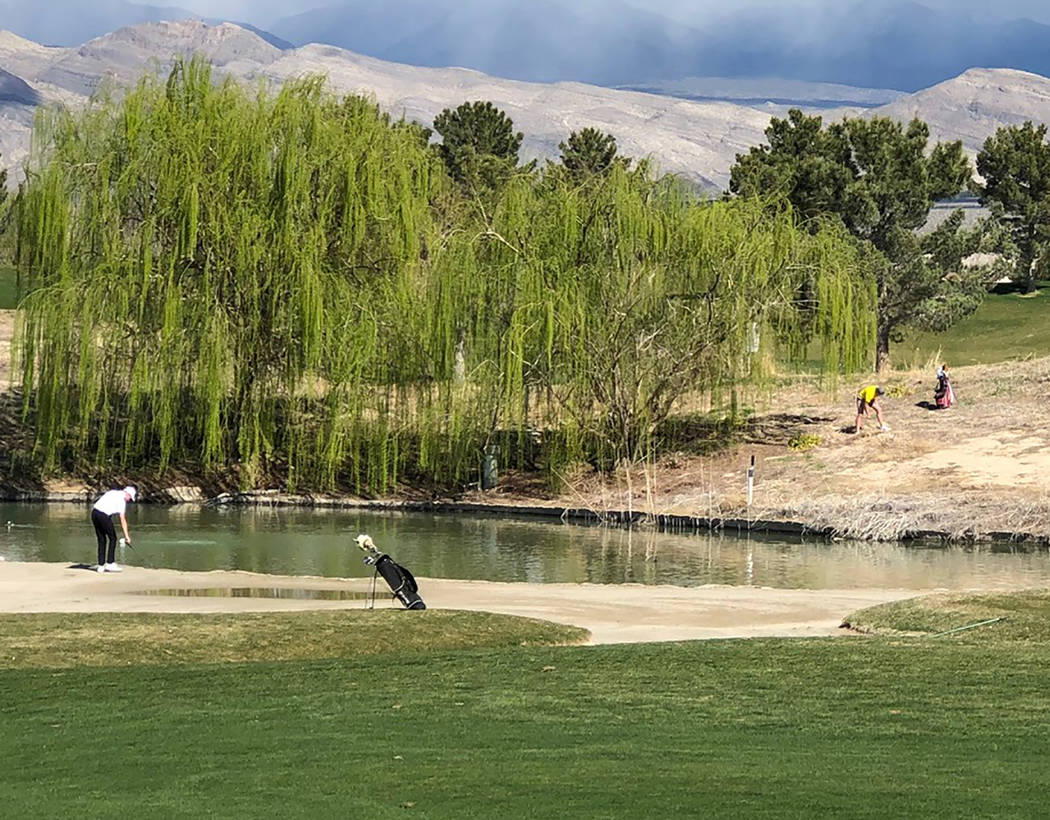 Tom Rysinski/Pahrump Valley Times ian Kingsley, upper right, of Pahrump Valley and his playing partners are all in less-than-ideal situations on No. 9 Friday at Mountain Falls Golf Club during the ...
