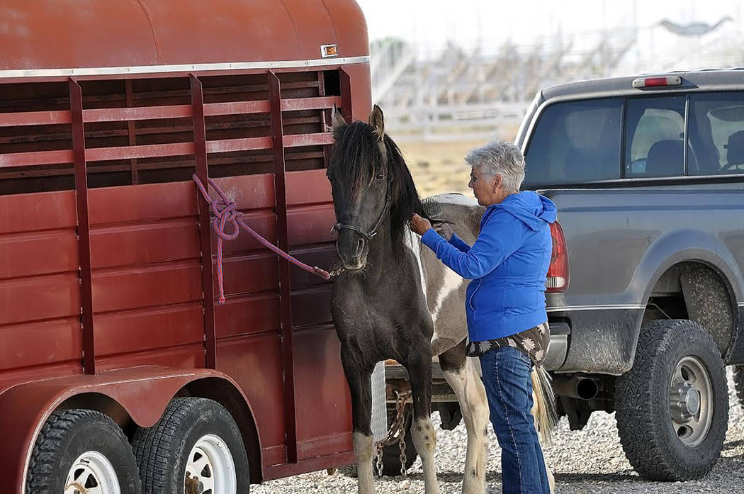 Horace Langford Jr./Pahrump Valley Times - Recreational riders now have a safe location in whic ...