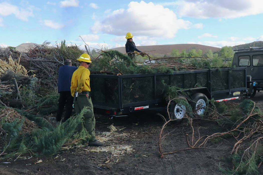 Nevada Department of Forestry Homeowners haul woody vegetation at a 2018 Junk the Junipers even ...