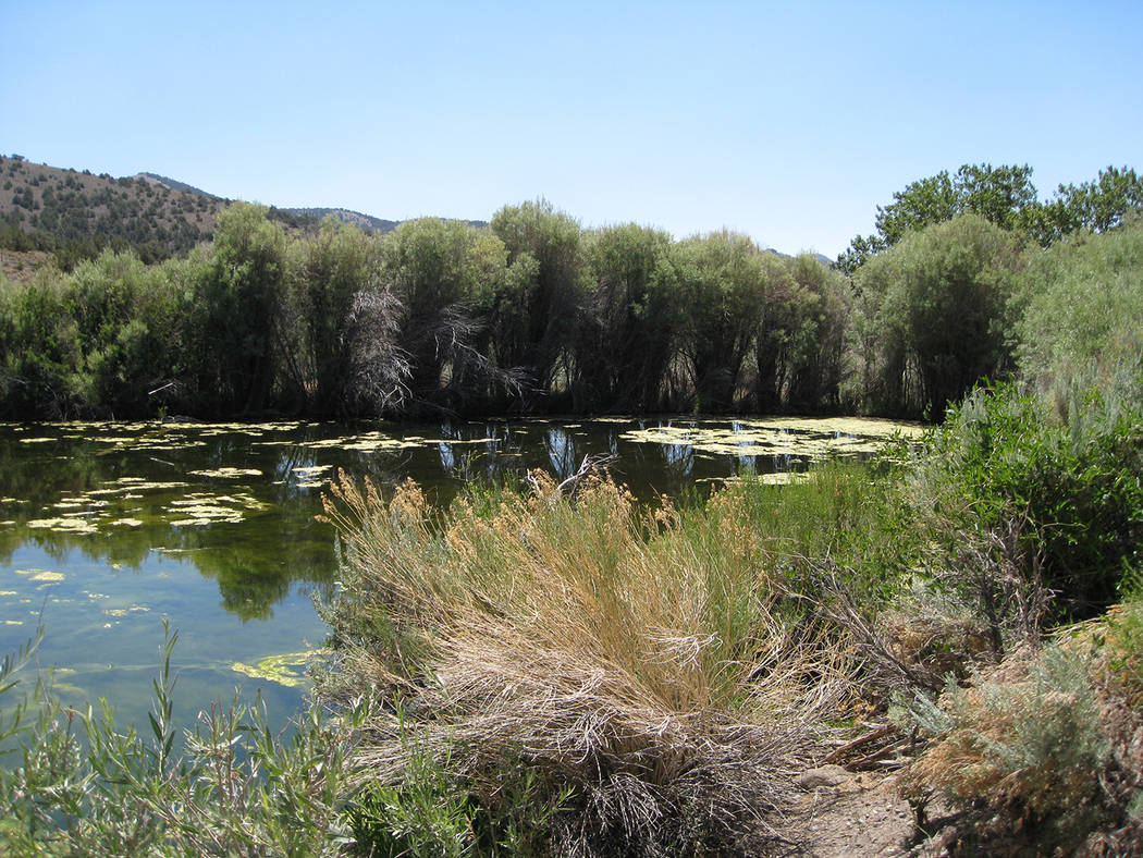 Special to the Pahrump Valley Times This photo shows Farrington Ranch near Cloverdale Creek.
