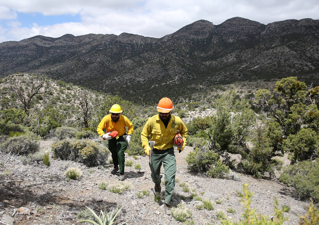 Firefighter from Bureau of Land Management conduct wildland fire readiness training exercise at ...