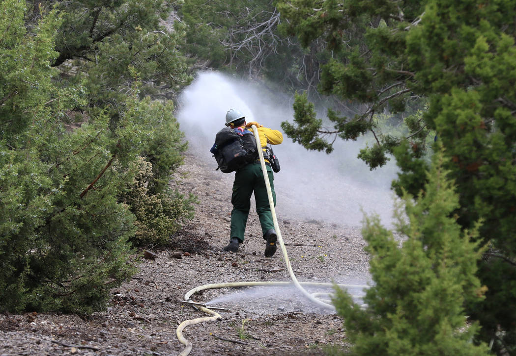 A firefighter from Bureau of Land Management sprays water as he conducts wildland fire readines ...