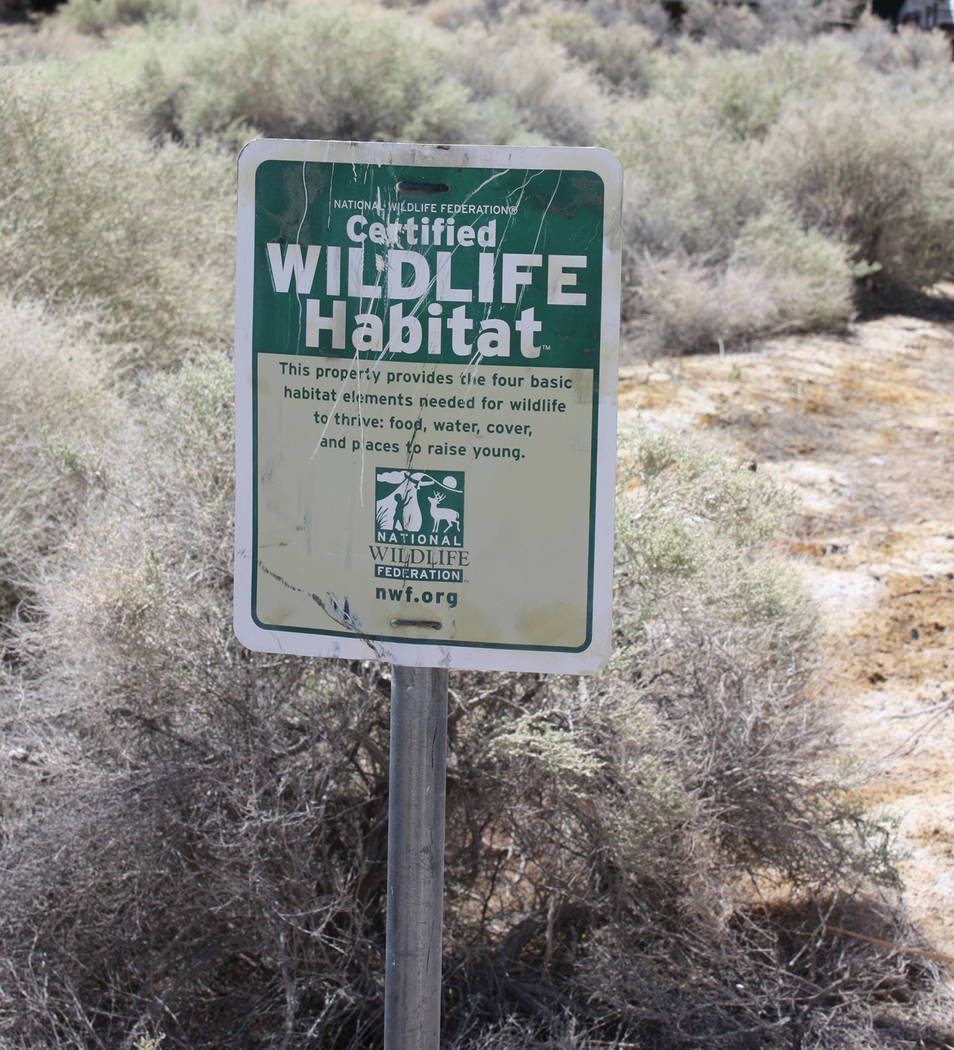 Robin Hebrock/Pahrump Valley Times A certified wildlife habitat sign has sat in front of Brian ...