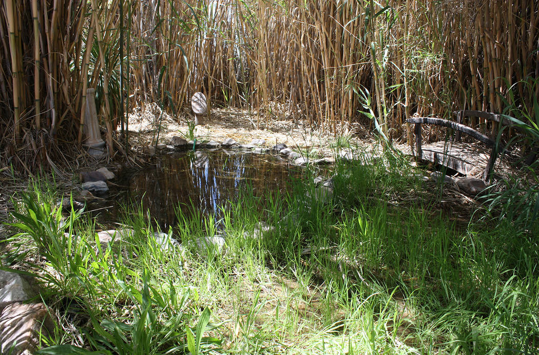 Robin Hebrock/Pahrump Valley Times Pictured is the pond that spurred the creation of the artifi ...