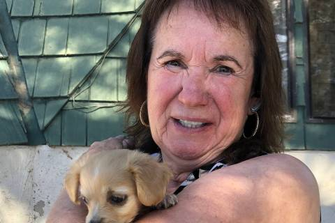 Tom Rysinski/Pahrump Valley Times Never Forgotten Animal Society Executive Director Pat Leming ...