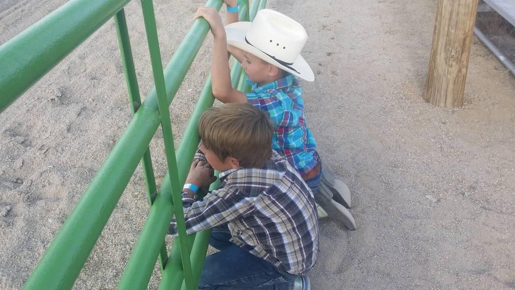 David Jacobs/Tonopah Times-Bonanza Kids look on at the 2016 Smackdown Rodeo event. Manuel Souza ...