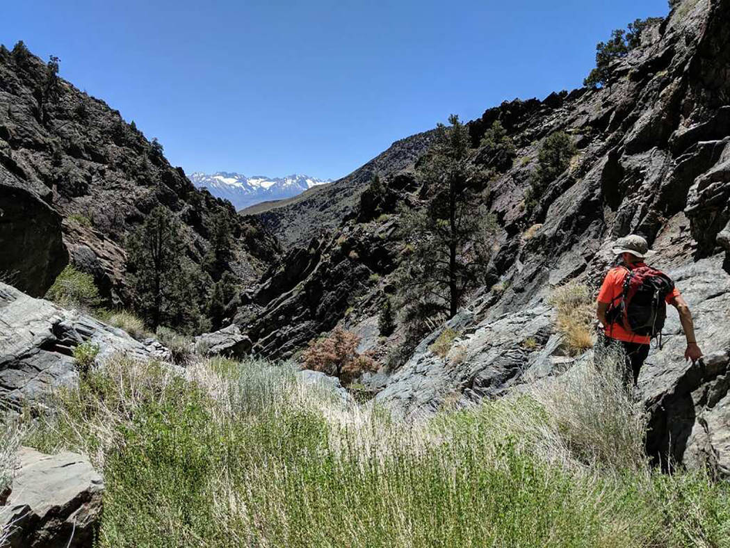 Inyo County Sheriff's Office/Facebook The multi-agency search included trained search and rescu ...