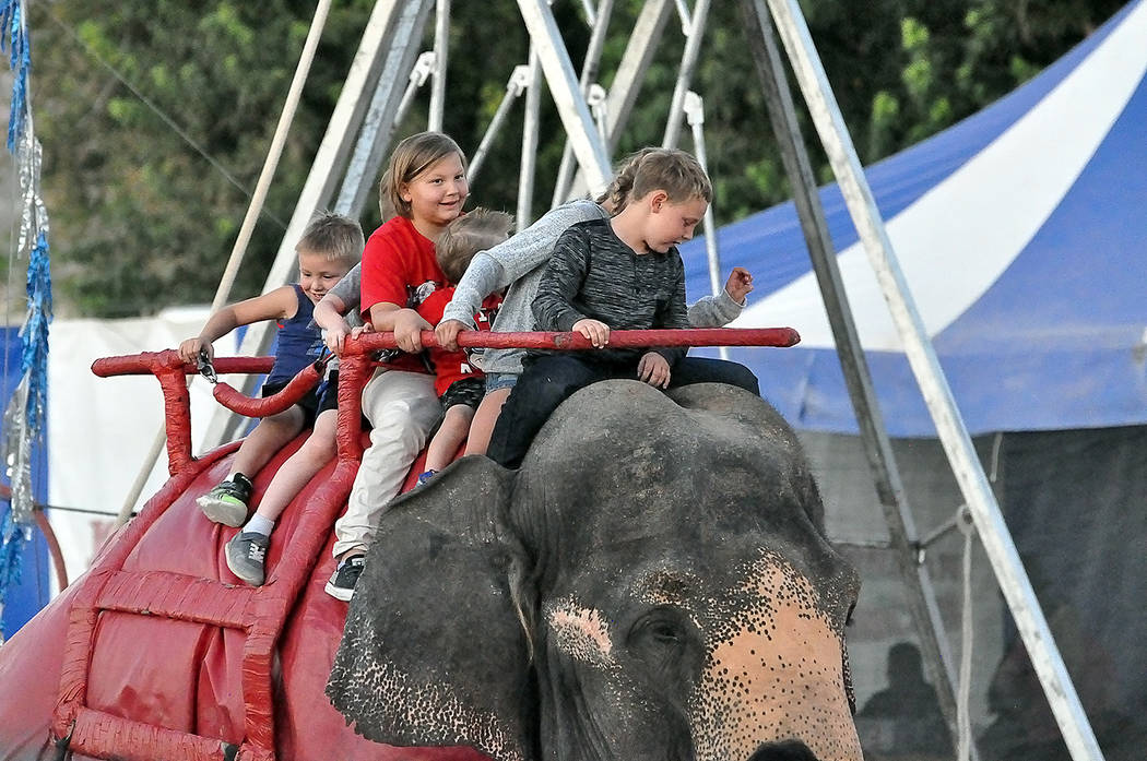 Horace Langford Jr./Pahrump Valley Times Several kids got the chance to ride an elephant, prior ...