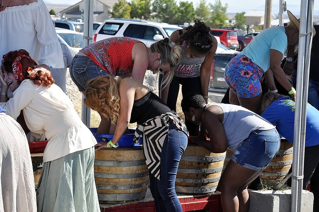 Horace Langford Jr./Pahrump Valley Times The popular Pahrump Valley Winery Grape Stomp, now du ...