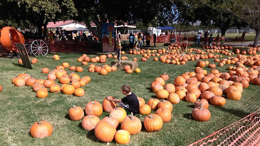 Selwyn Harris/Pahrump Valley Times The pumpkin patch is always a big draw for those attending t ...