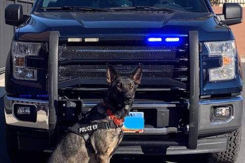 Nevada Department of Public Safety Lobo and his handler's duty station will be in Southern Ne ...