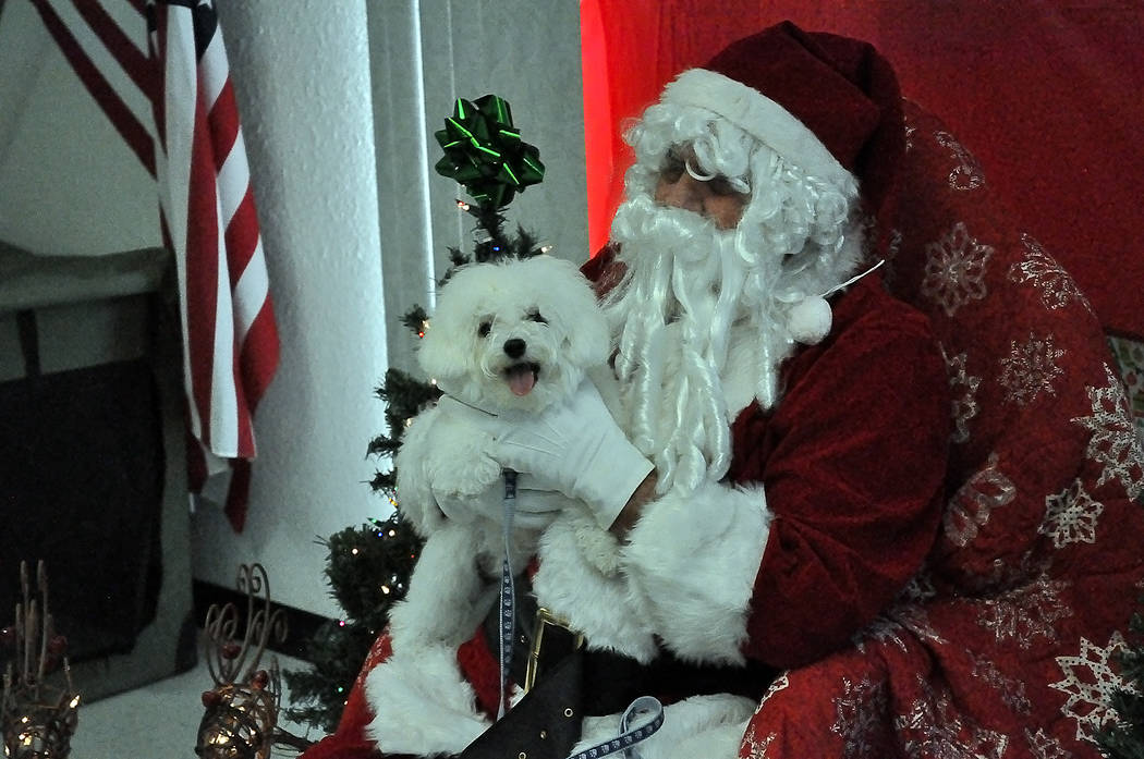Horace Langford Jr./Pahrump Valley Times Pahrump Valley Obedience Club Dog Photos with Santa Sa ...