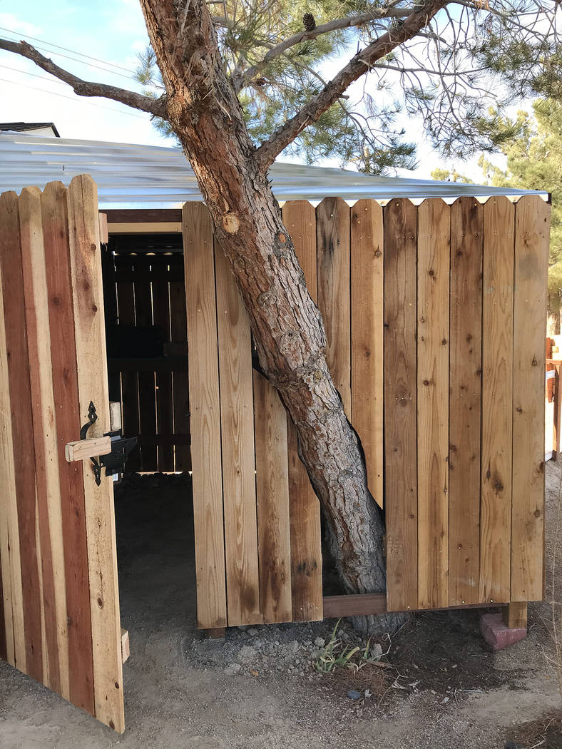 Robin Hebrock/Pahrump Valley Times A shed that has been added to the Floyd Elementary School Ga ...
