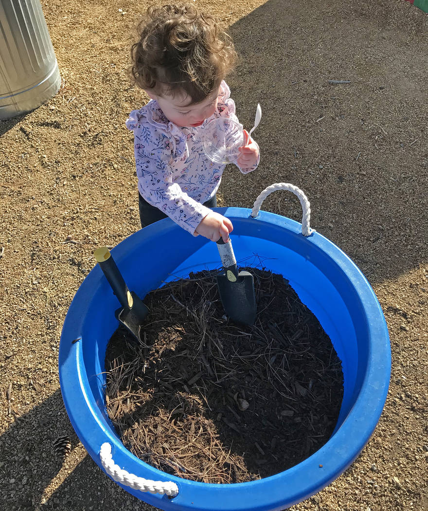 Robin Hebrock/Pahrump Valley Times A youngster gets curious about the digging implements placed ...