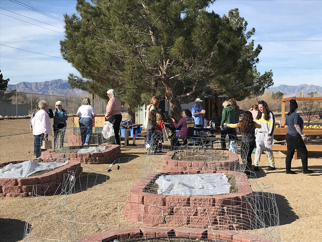 Robin Hebrock/Pahrump Valley Times Red bricks form the borders of six raised beds created on th ...