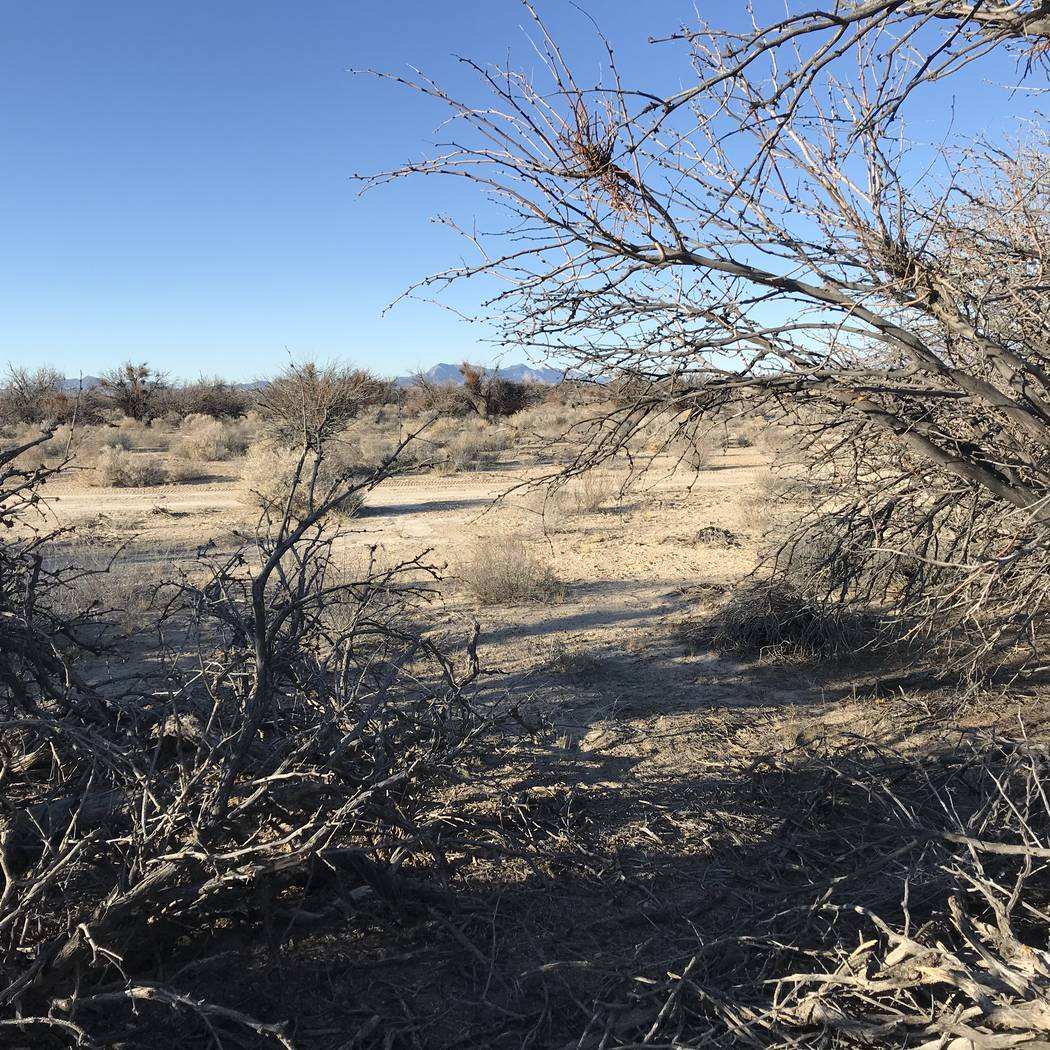 Vern Hee/Special to the Pahrump Valley Times Many trappers put their traps near off-highway veh ...