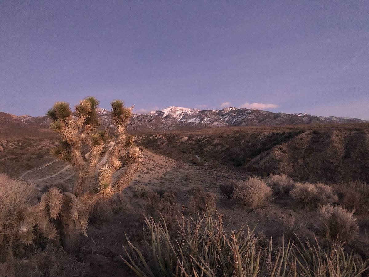 Dan Simmons/Special to the Pahrump Valley Times