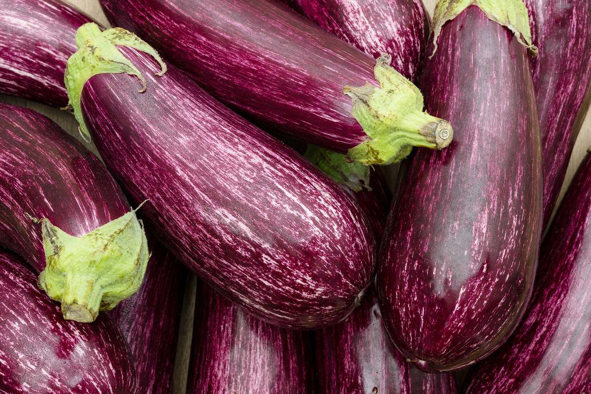 """Getty Images """"Eggplant is not as popular in American gardens as it's cousin Tomato, but it i ..."""