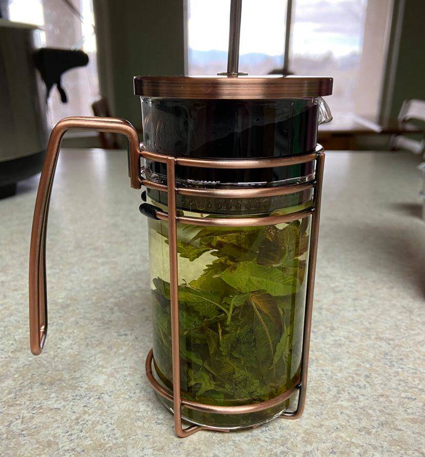 Terri Meehan/Special to the Pahrump Valley Times When brewed together Lemon Balm, Lemon Verbena ...