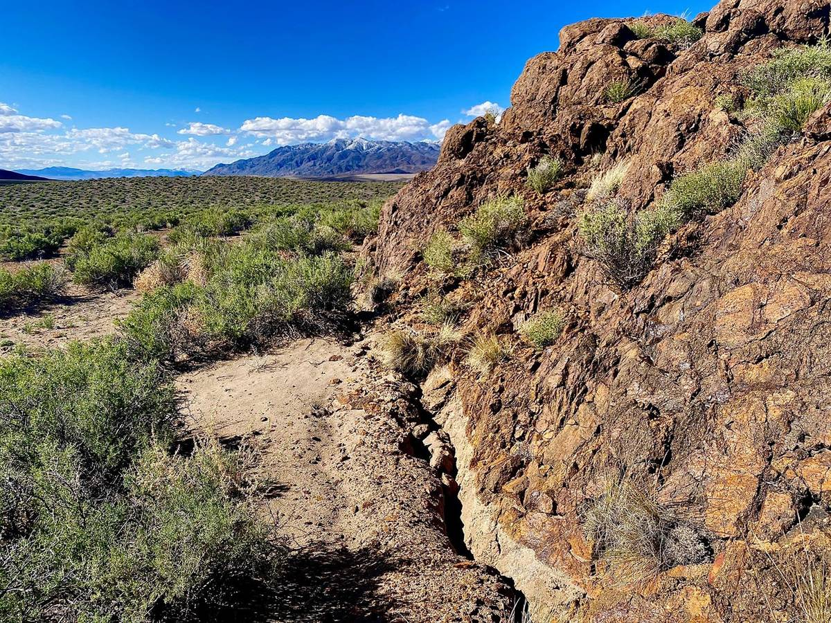Special to the Pahrump Valley Times The surface rupture mapped by the University of Nevada, Ren ...