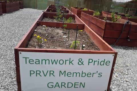 Selwyn Harris/Pahrump Valley Times Members of Pahrump's Preferred RV Resort have come togethe ...