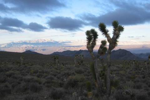 Desert National Wildlife Refuge The Desert National Wildlife Refuge in Nevada is shown in this ...