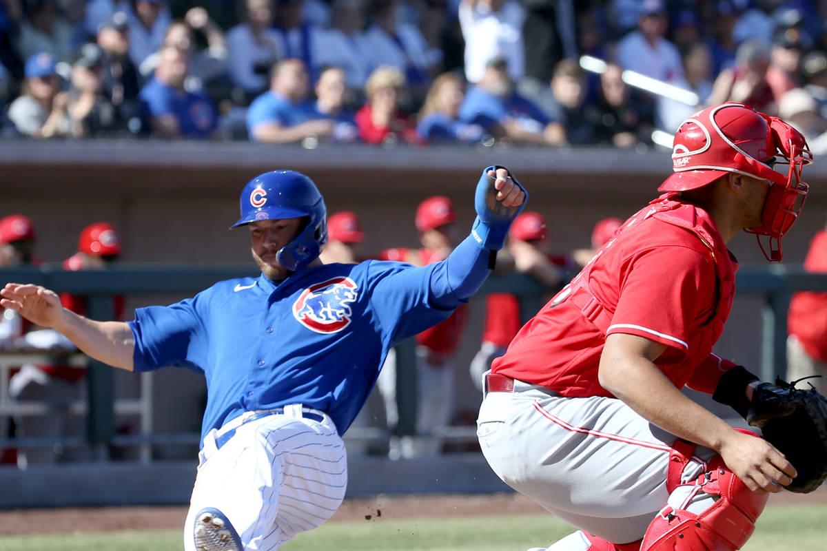 Chicago Cubs designated hitter Trent Giambrone (85) scores past Cincinnati Reds catcher Francis ...