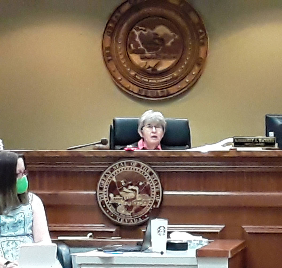 Selwyn Harris/Pahrump Valley Times Nye County Fifth District Court Judge Kimberly Wanker senten ...