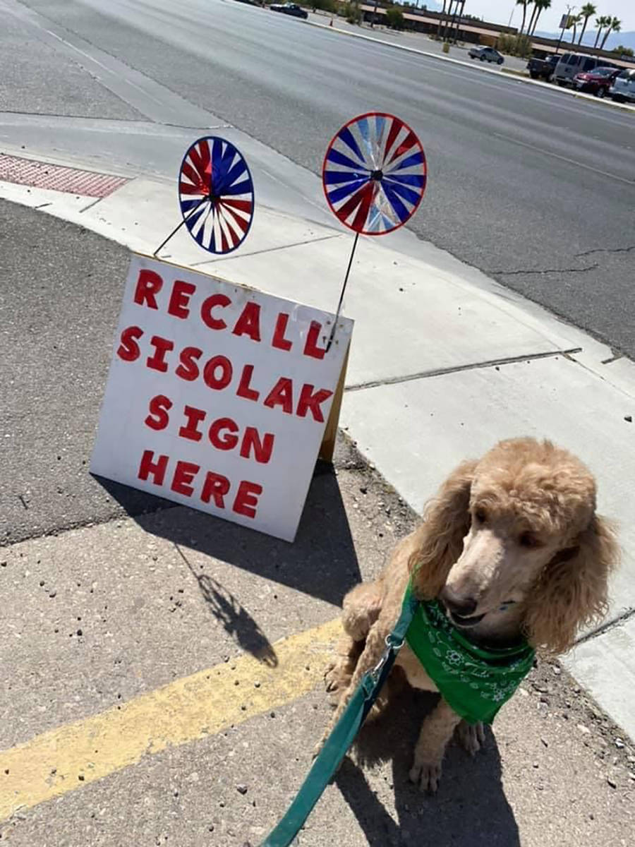 """Special to the Pahrump Valley Times """"Recall Sisolak - Sign Here"""" signs help direct voters to lo ..."""