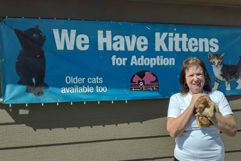Selwyn Harris/Pahrump Valley Times Never Forgotten Animal Society's Executive Director Pat Lemi ...