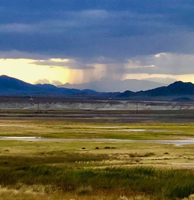 Susan Sorrells/Special to the Pahrump Valley Times The Amargosa Basin National Monument would b ...