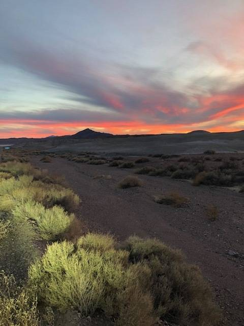 Susan Sorrells/Special to the Pahrump Valley Times Once the Amargosa Basin becomes a monument t ...