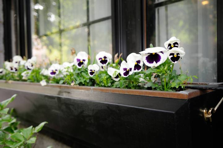 Getty Images Window boxes are a perfect solution for gardening in small spaces or for apartmen ...