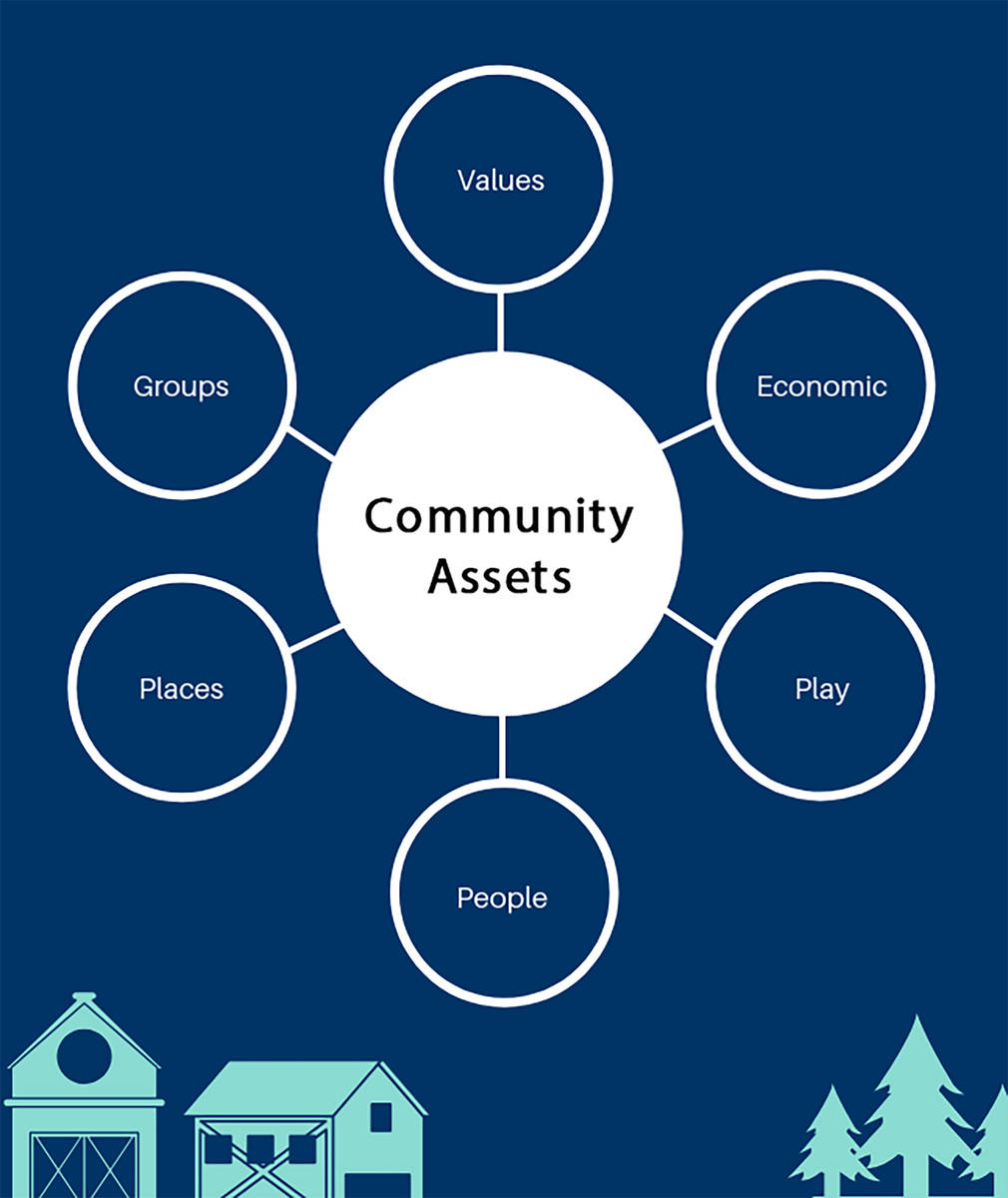 Special to the Pahrump Valley Times This graphic included in the Community Assets Survey detail ...