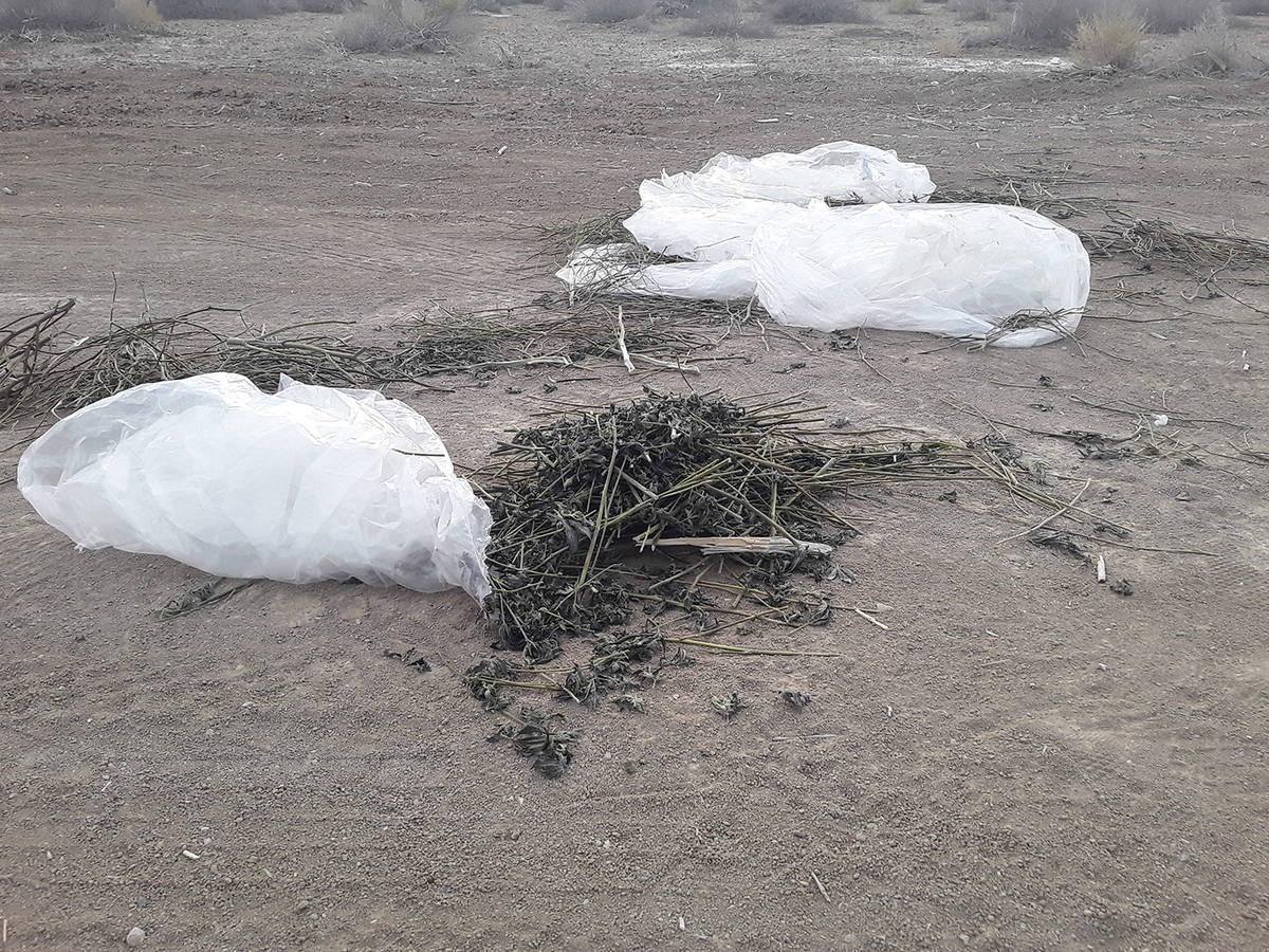 Selwyn Harris/Pahrump Valley Times At least two of the trash bags filled with the low-grade scr ...